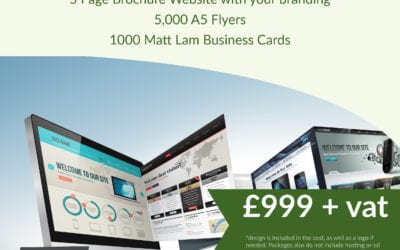 NEW WEB & PRINT PROFESSIONAL BUSINESS PACKAGE